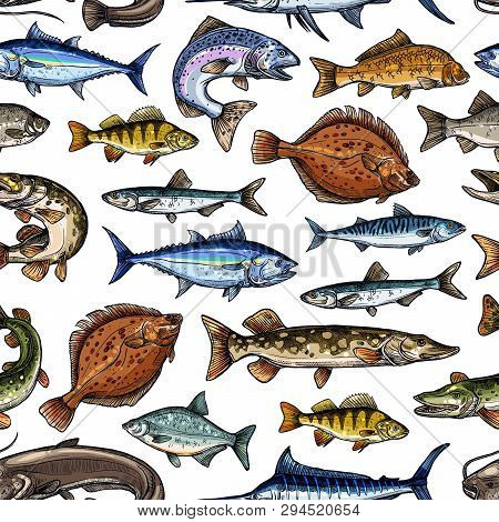 Fish Sketch Seamless Pattern. Vector Fishing Marlin, Scad Or Horse Mackerel, Scomber Or Anchovy And