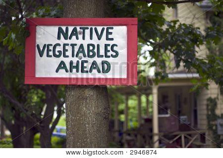Native Vegetables Sign