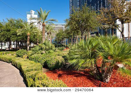 View Of The Las Vegas Near Casino Ballys