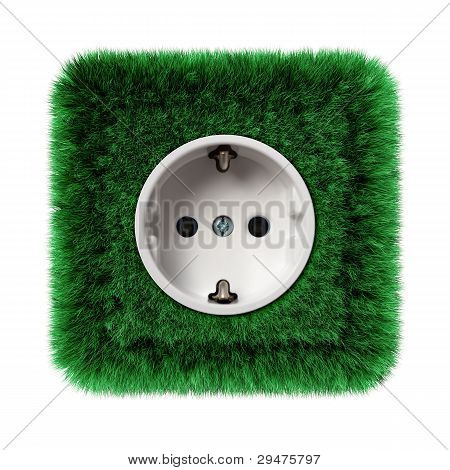 socket covered with green grass