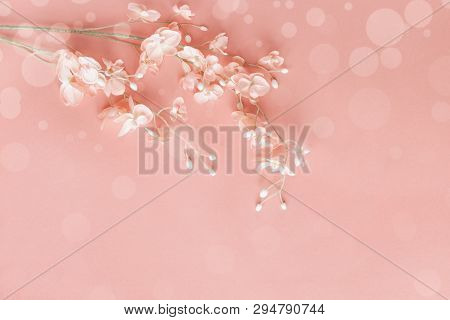 Beautiful Pink Flowers Over A Pink Bokeh Background With Copy Space For Your Text Top View. Flat Lay