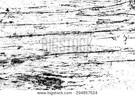 Vector Wood Texture. The Bark Of An Old Tree. Abstract Background. For Posters, Retro And Urban Desi