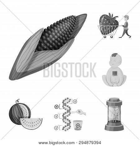Isolated Object Of Transgenic And Organic Icon. Collection Of Transgenic And Synthetic Vector Icon F