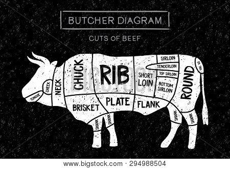 Poster Butcher Diagram Of Meat Steaks: Brisket, Shank, Rib, Plate, Flank, Sirloin, Shortloin, Rump,