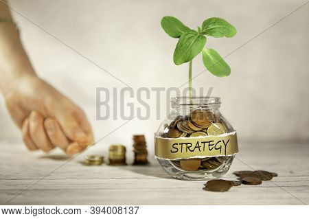 Strategy. Glass Jar With Coins And A Plant, In The Background A Female Hand Puts Coins Near A Glass