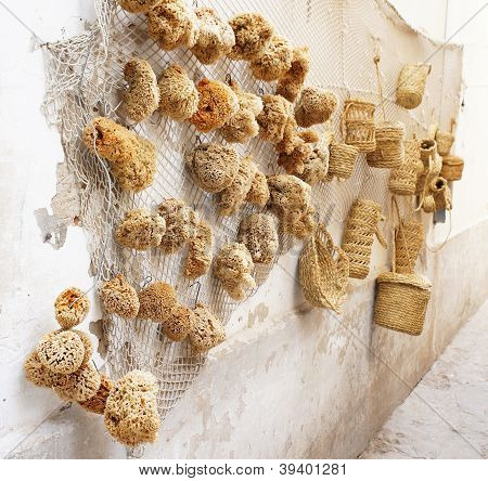 Natural sponges on a rustic wall