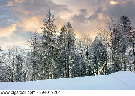 Winter Scenery At Dawn. Trees On Snow Covered Meadow Beneath A Sky With Clouds In Colorful Light