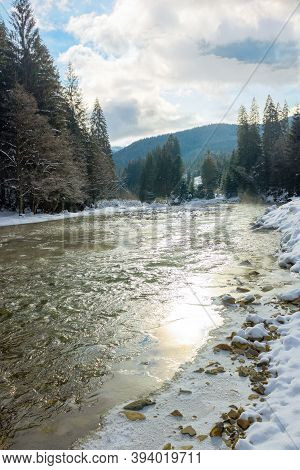 Mountain River In Wintertime. Sunny Carpathian Landscape With Spruce Forest And Snow Covered Shore.