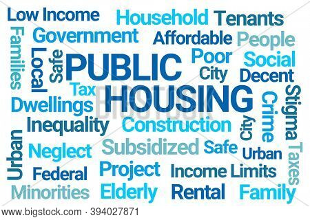 Public Housing Blue Word Cloud on White Background