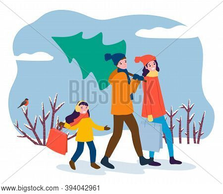 Family Returning Home With Bought Christmas Tree For Winter Holidays. Mom And Dad With Kid, Carrying