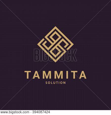 Minimalist Initial Letter Ts, St, T & S Logo Icon Concept. Creative Minimal Alphabet Emblem Design T