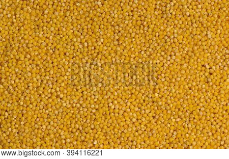 millet groats texture abstract background