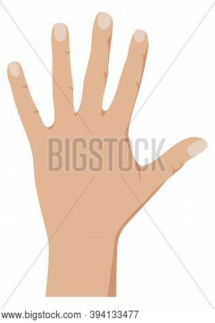 Open Palm Hand Showing Number Five. Vector Illustration Of Counting Hand Isolated On White Backgroun