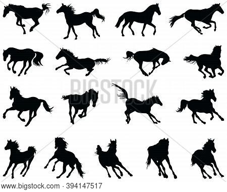 Black Silhouettes Of Horses At A Gallop On A White Background