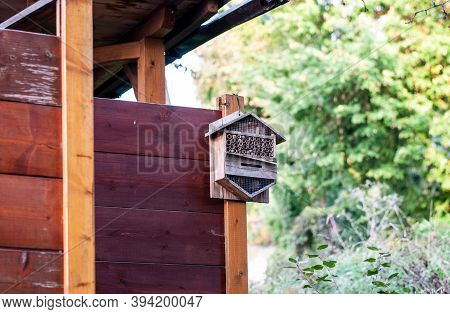 A Small Insect Hotel Fixed At The Wooden Wall Of A Garden Hut