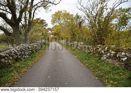 Traditional Dry Stonewalls By A Country Road On The Island Oland In Sweden