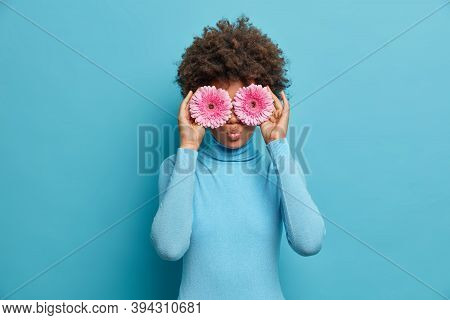 Funny Curly Haired Young Woman Covers Eyes With Pink Gerberas Daisy, Makes Bouquet And Best Natural