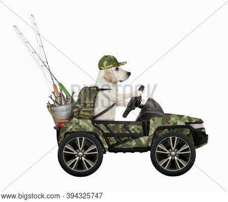 A Dog Fisher Drives A Car With A Bucket Full Of Fish. White Background. Isolated.