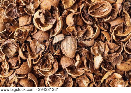 Walnut Shells As A Background. Texture Of Empty Broken Walnut Shells. Biodegradable Food Waste And P
