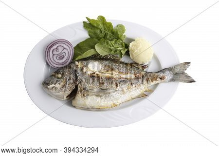 Grilled Sea Bream Fish, Isolated Image With White Background