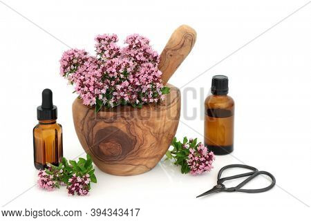 Oregano herb flowers & leaves in a mortar with pestle with essential oil bottles. Used as food seasoning & in herbal medicine. Eases IBS , is anti bacterial, anti inflammatory and is an anti coagulant