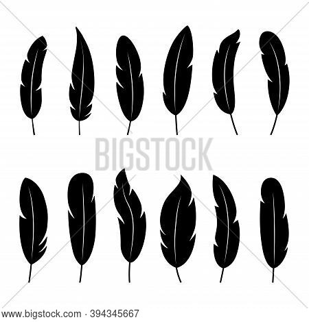 Set Of Black Silhouettes Of Feathers On White Background, Vector Illustration