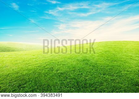 Landscape View Green Grass Meadow Field With White Clouds And Blue Sky In Summer Seasonal.