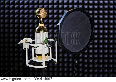 Moscow \ Russia 07 18 2019: Microphone