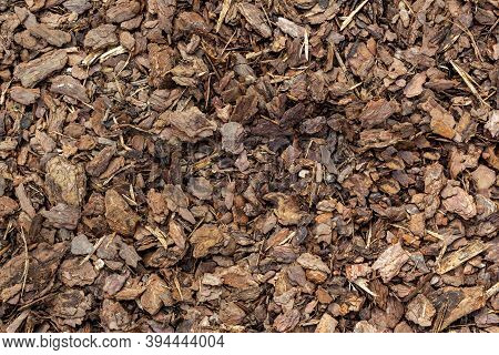Crushed Tree Bark Texture Closeup. Wooden Mulch Grounds Fragment As An Abstract Background Compositi