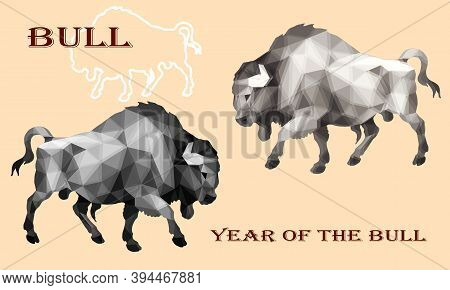 Bison, Two Silhouettes, Isolated Image On A Colored Background In A Low-poly Style,