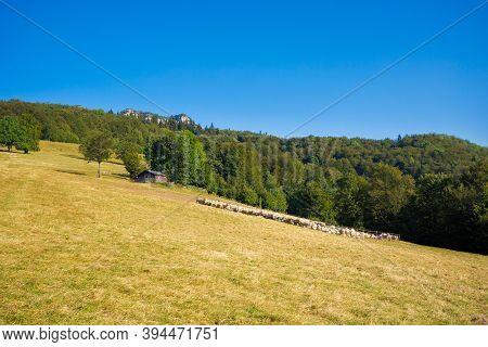 Velka Fatra Borisov Mountains Landscape