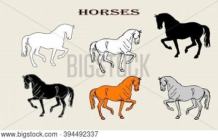 Set Of Isolated Drawings And Silhouettes Of A Prancing Horse, Doodles