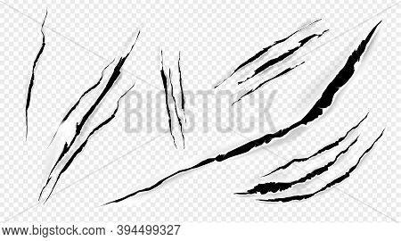 Cat Marks, Claws Scratches Isolated Vector Pets Or Wild Animal Nails Rip, Tiger Or Bear Paws Sherds
