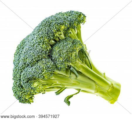 Side View Of Piece Of Fresh Green Broccoli Isolated On White Background
