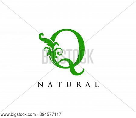 Green Q Letter Logo. Green Floral Q With Classy Leaves Shape Design Perfect For Boutique, Jewelry, B