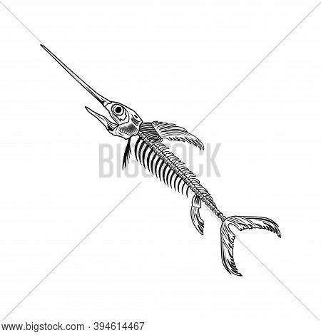 Swordfish Bones Vector Illustration. Fish Skeleton, Chord, Fins, Head And Tale. Dead Animal Or Food