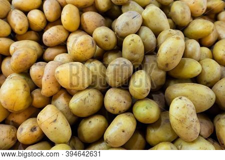 Potato. Lots Of Potatoes. The Frame Is Filled With Potatoes