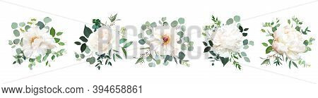 Ivory Beige, White And Creamy Rose, Peony Flowers Vector Design Wedding Bouquets. Eucalyptus, Greene