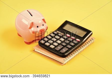 Banking Account. Earn Money Salary. Money Budget Planning. Calculate Profit. Piggy Bank Pink Pig And