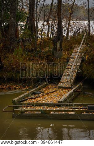Old Dock And Ramp. An Old, Slippery Dock And Ramp.