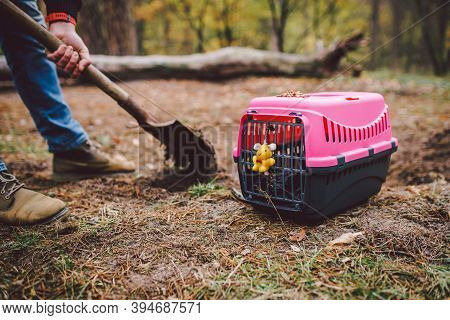 The Topic Of Burial Of Pets Is Not Legal. Man Digs Hole With Shovel For Burying An Animal In The For