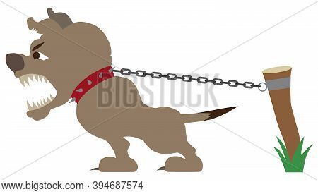 A Vicious Guard Dog Is Straining At His Chain And Barking