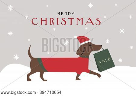 The Dog Carries Christmas Gifts In Its Teeth. Dachshund. Christmas Discounts. Vector Flat Illustrati