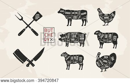 Butcher's Guide Set. Pig, Lamb, Cow, Chicken, Turkey Silhouette Cuts. Bbq Utensils. Meat Diagram. Cu