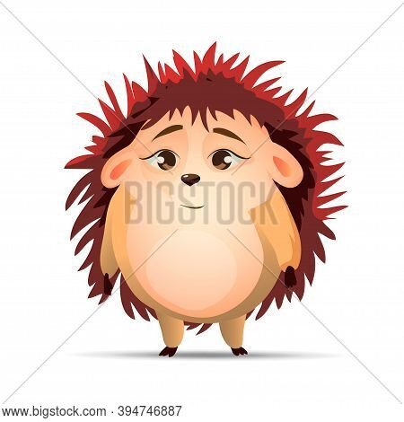 Cute Hedgehog Stand And Watch. Vector Hedgehog. Hedgehogs Vector Illustration. Cartoon Characters.
