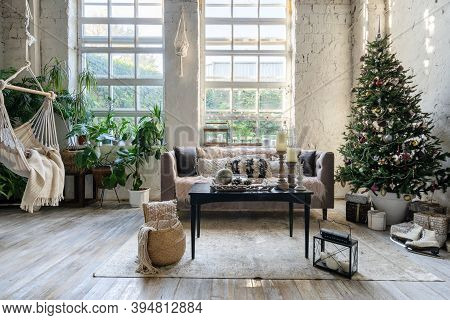 Cozy Living Room With Comfort Sofa, Coffee Table Near Christmas Tree And House Plant Close To Rope S
