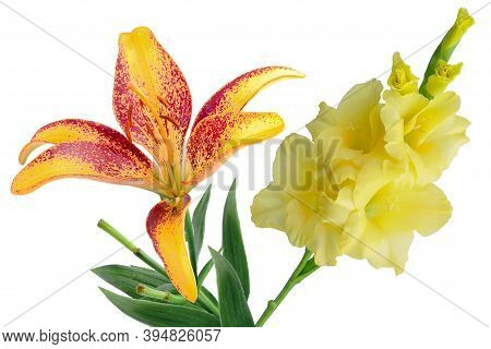 Yellow Gladiolus And Yellow And Red Lily, Two Flowers On Nation Day Or Mother's Day Isolated On A Wh