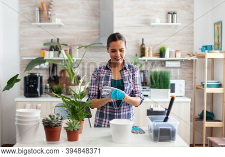 Woman House Planting In Kitchen Using Gardening Gloves. Using Fertil Soil With A Shovel Into Pot, Wh