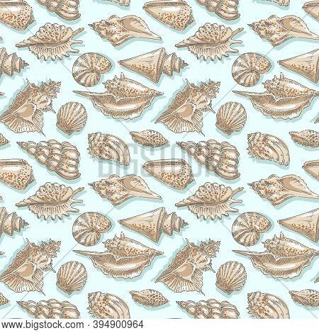 Seashell, Shell, Sea, Mollusk, Shellfish, Nautical Seamless Pattern