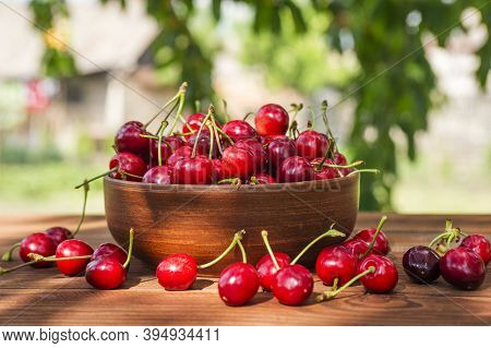 Ripe Sweet Cherries In Ceramic Bowl On A Wooden Table On Cherry Tree Branches Background. Sweet Cher